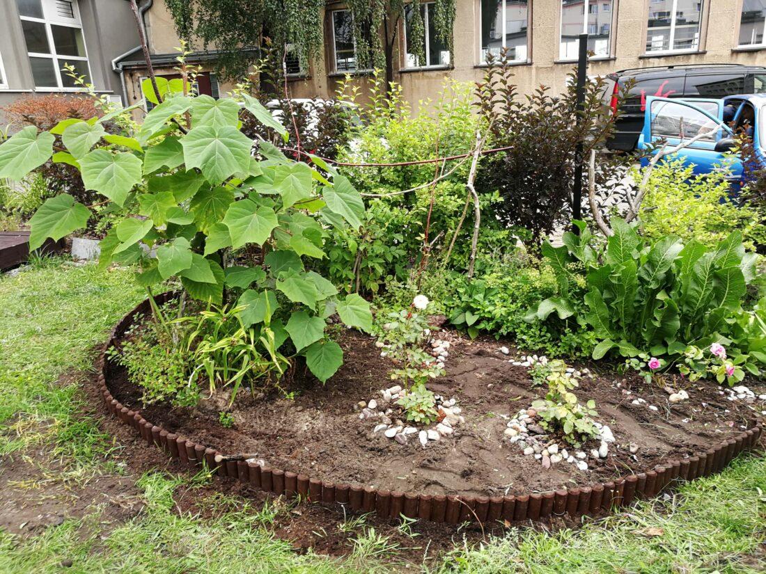 Zdjęcie: Ogród społeczny na dziedzińcu MOPS w Gdyni